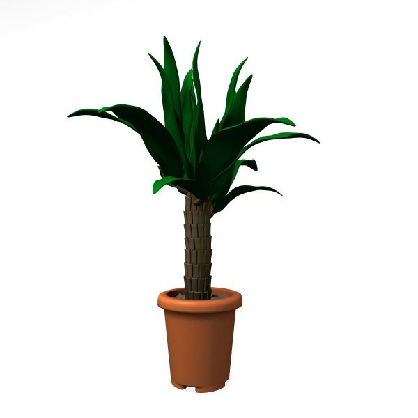 3ds max palm