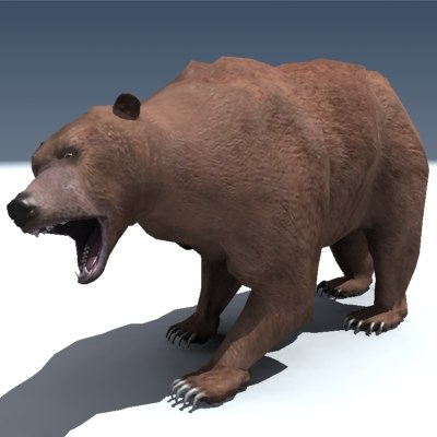 rigged grizzly bear 3d model