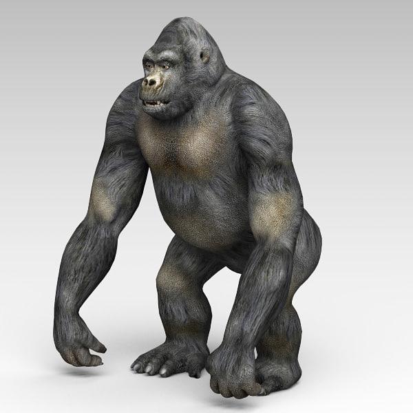 3d gorilla monkey model