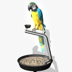 3d blue parrot ara model