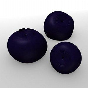 3d model blueberry fruit