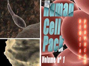 pack cells 3d model