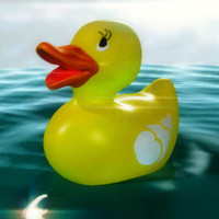 cute rubber duck 3d model