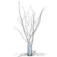 Plant 1.zip