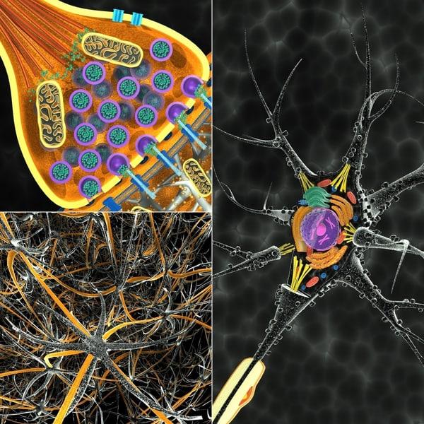neuron synapse network c4d