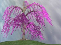 3d willow tree model