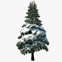 Snow Tree 1