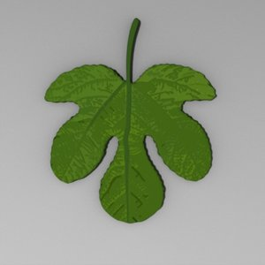 3d fig leaf