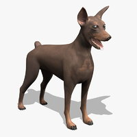 pinscher dog 3d model