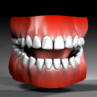 3d model human mouth