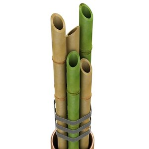 bamboo decoration plant 3d max
