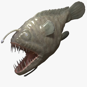 3d angler fish model