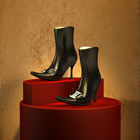 woman shoes 3d 3ds