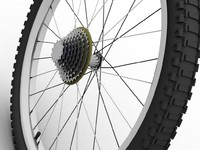 Bicycle rear wheel