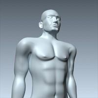 man anatomically 3d c4d