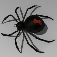spider arachnid 3d obj