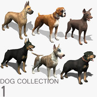 Dog Collection (1)