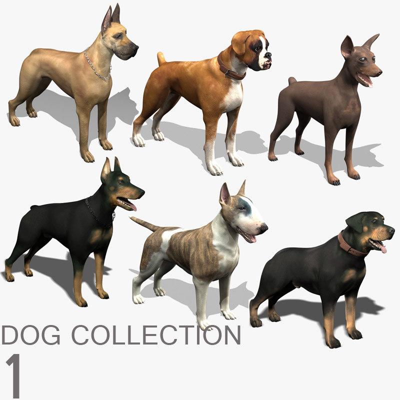 3d dog 1 model