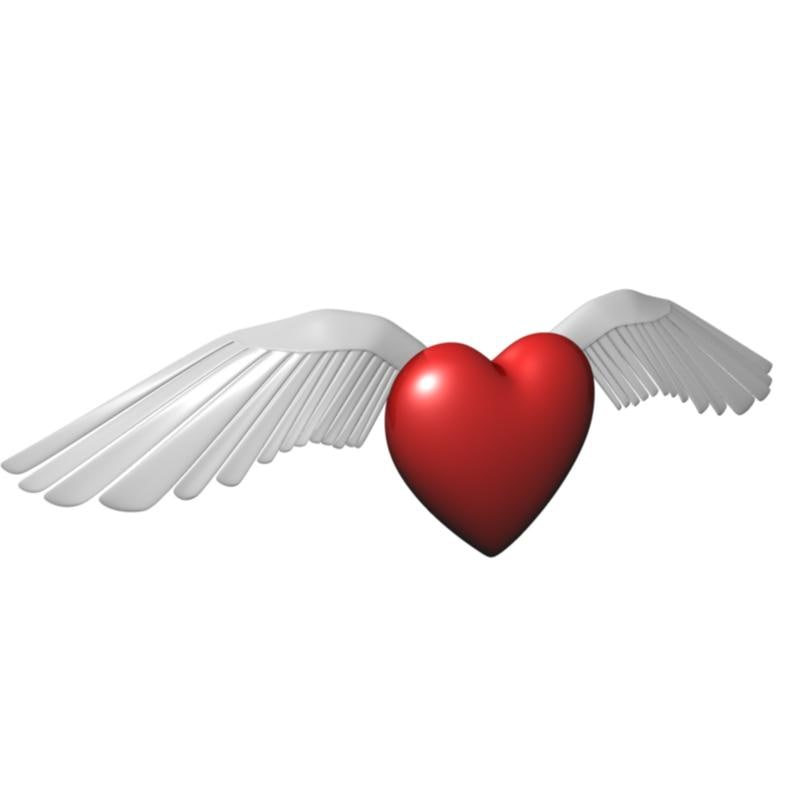 winged heart 3ds