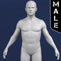polygonal male body character 3d model