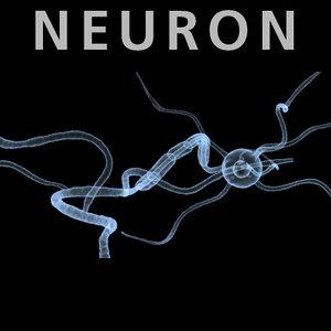 neuron cell dendrites biomedical 3d model