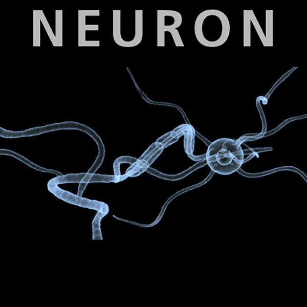 Neuron - dendritic biomedical model