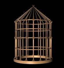 free bird 3d model