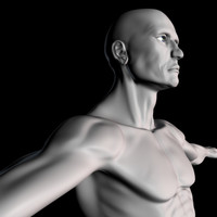 polygonal realistic male 3d model