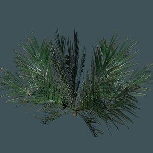 3ds max palm plant