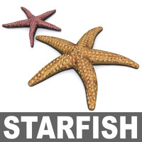 starfish.3ds.zip