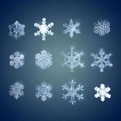 snow flakes 3d model