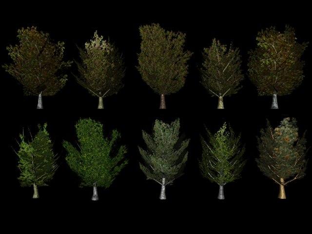 3d model ready trees
