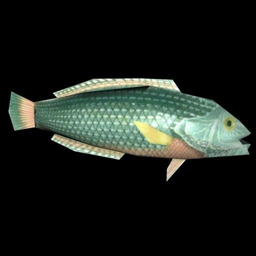 fish blitzmaker 3d 3ds