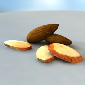 3d almond nut