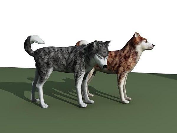 3d model sled sleddog dog