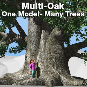 tree oak lightwave single 3d model