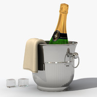 champagne bucket bottle 3d model