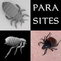 parasites louse tick flea 3ds