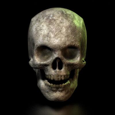 skull old 3d model