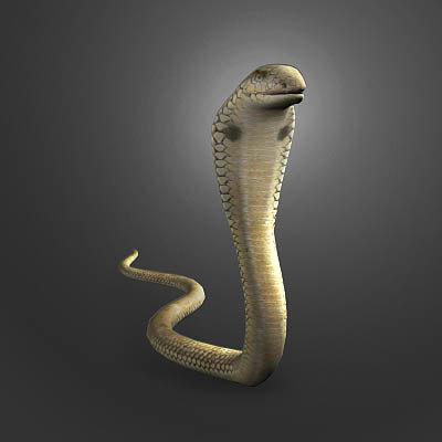 3dsmax king cobra animation