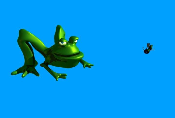3d model frog fly