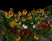 3d ma flowers