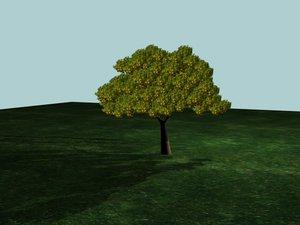 small orange tree 3d max