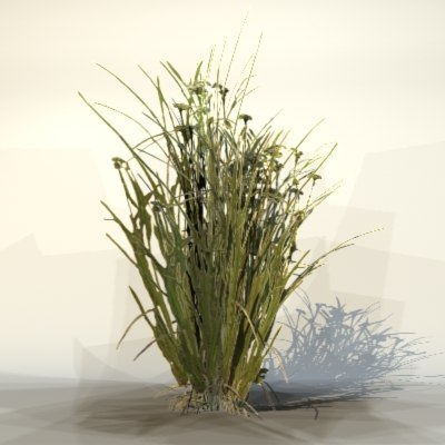 plant bush 3d max