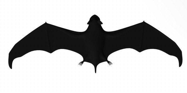 bat animal 3d model