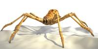 3ds max spider arachnid