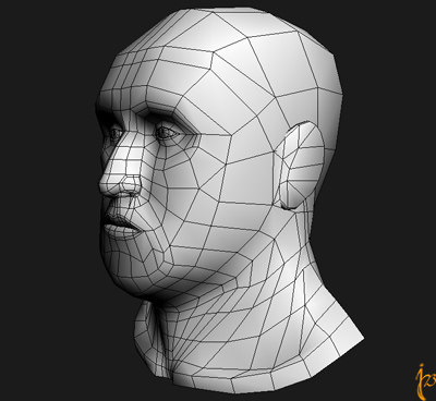 man topology 3d model