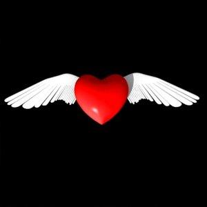 heart valentine 3ds