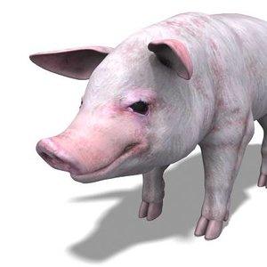 3d x pig rigged