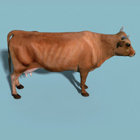 cow max